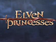 Бонусные выплаты от игры Эльфийские Принцессы в казино Вулкан